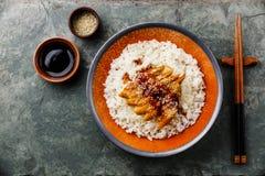 Aal mit Soße und indischem Sesam auf Reis Stockbilder