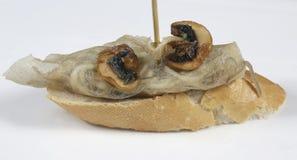 Aalaufsteckspindel mit Pilzen Lizenzfreie Stockbilder
