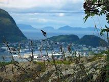 Aalesund-Panorama Stockbild