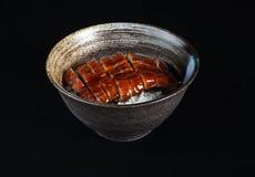 Aalfleisch mit Reis Lizenzfreies Stockbild