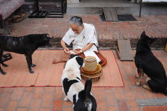 Aalmoes die ceremonie in Luang Prabang, Laos geven Royalty-vrije Stock Afbeeldingen