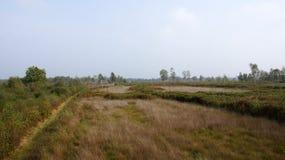 Aamsveen près d'Enschede Images stock