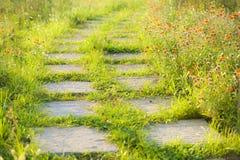 Aan beide kanten van de bochtige steenweg, die met Perzische chrysant werd behandeld stock fotografie