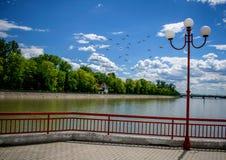Aan het begin van de zomer in een mooi park Water, blauwe hemel, groen bos en een lantaarn royalty-vrije stock foto