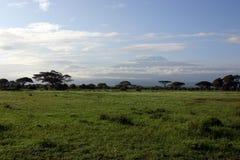 Aan Kilimanjaro royalty-vrije stock foto