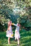 Aanbiddelijk meisje in bloeiende appeltuin op zonnige de lentedag Royalty-vrije Stock Afbeelding