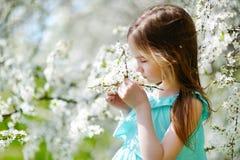 Aanbiddelijk meisje in bloeiende kersentuin Stock Fotografie