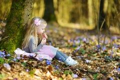 Aanbiddelijk meisje die de eerste bloemen van de lente in het hout op mooie zonnige de lentedag plukken Royalty-vrije Stock Fotografie
