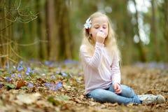 Aanbiddelijk meisje die de eerste bloemen van de lente in het hout op mooie zonnige de lentedag plukken stock afbeelding