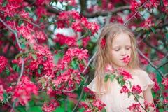 Aanbiddelijk meisje die de lente van dag in appel bloeiende tuin genieten stock afbeeldingen