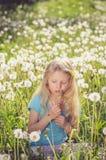 Aanbiddelijk meisje die witte paardebloembloemen blazen royalty-vrije stock fotografie