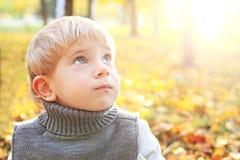 Aanbiddelijk weinig jongen die van de blondebaby in openlucht in het park dromen Royalty-vrije Stock Foto