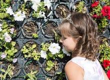 Aanbiddelijk weinig kindmeisje in park dichtbij bloembed in de zomerdag Royalty-vrije Stock Foto's