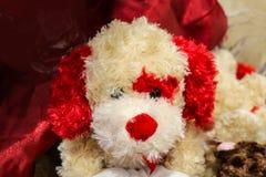 Aanbiddelijk wit en rood Valentine vulde puppydog met rood bont rond één oog en een valentijnskaart in zijn mond Royalty-vrije Stock Afbeelding