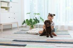 Aanbiddelijke chocolade labrador retriever en meisje stock foto's