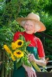 Aanbiddelijke hogere vrouwelijke tuinman met zonnebloemen stock fotografie