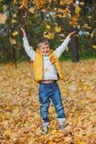 Aanbiddelijke jongen in de herfstpark Stock Afbeeldingen
