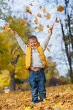 Aanbiddelijke jongen in de herfstpark Royalty-vrije Stock Afbeeldingen