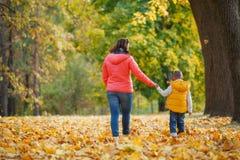 Aanbiddelijke jongen met zijn moeder in de herfstpark stock foto's