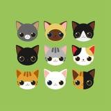 Aanbiddelijke katjesgezichten van verschillende kleuren vector illustratie