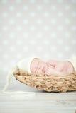 Aanbiddelijke pasgeboren gelukkige babyslaap Stock Foto