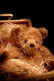 Aanbiddelijke teddybear in mand stock afbeeldingen