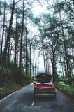 Aandrijving op de weg aan het bos stock foto's