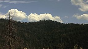 Aandrijving in Yosemite stock videobeelden