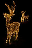 Aangestoken Rendieren voor Kerstmis Royalty-vrije Stock Afbeelding