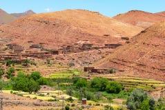 Aanplanting in oase van Marokko royalty-vrije stock fotografie