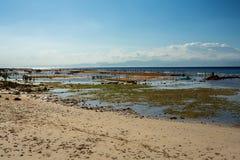 Aanplantingen van zeewier op strand in Bali, Nusa Penida Royalty-vrije Stock Fotografie