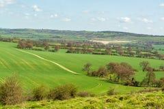 Aanplantingsgebieden en landbouwbedrijven op heuvelig die landschap van de heuveltop wordt gezien royalty-vrije stock afbeeldingen