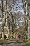 Aanstotend paar in park Royalty-vrije Stock Afbeeldingen