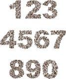 Aantal Royalty-vrije Stock Fotografie
