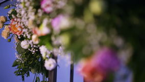 Aantal kleuren bij huwelijksboog stock videobeelden