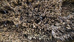 aantallen bamboe met een speciaal patroon stock afbeeldingen