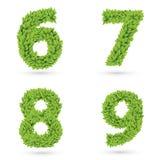 Aantallen van groene bladereninzameling vector illustratie