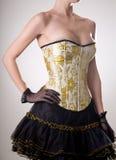 Aantrekkelijk burlesk meisje in korset met gouden borduurwerk Stock Foto