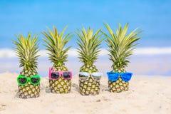 Aantrekkelijke ananassen op het strand tegen turkooise overzees Wearin Stock Fotografie