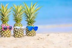 Aantrekkelijke ananassen op het strand tegen turkooise overzees Wearin Stock Foto