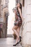 Aantrekkelijke donkerbruine elegante vrouw die pret hebben die van zomer, lachen en glimlachen de gelukkig tijdens de vakantierei stock foto