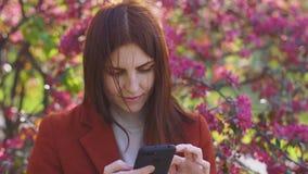 Aantrekkelijke jonge roodharige smatphone van het vrouwengebruik in park bij zonsondergang De lentebloemen van kers of sakurabloe stock video