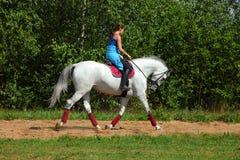 Aantrekkelijke jonge vrouw die een paard berijden Stock Foto's