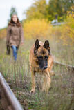 Aantrekkelijke jonge vrouw die met haar hondduitse herder bij de herfstbos, dichtbij spoormanier lopen - het huisdier is in nadru Royalty-vrije Stock Foto's