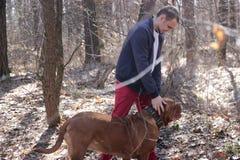 Aantrekkelijke jongen met haar pug hond stock afbeelding