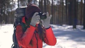 Aantrekkelijke vrouwelijke wandelaar die die in de winterbos onder bomen lopen met sneeuw worden behandeld die fotocamera met beh stock videobeelden