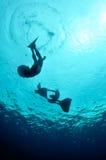 Aanvankelijke meters van vrije duikvlucht Stock Foto