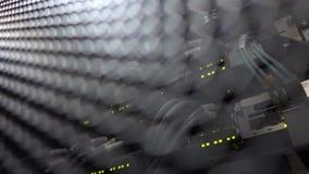 Aanwijzing van verrichting van de netwerkapparatuur Lan Network Connection stock video