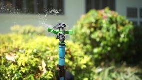 Aanzetsteen om de installaties water te geven stock video