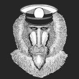 Aap, baviaan, hond-aap, aap Vectordruk voor kinderen Capitan, piraatdier Moedige zeeman Ontwerp voor kleuterschool vector illustratie